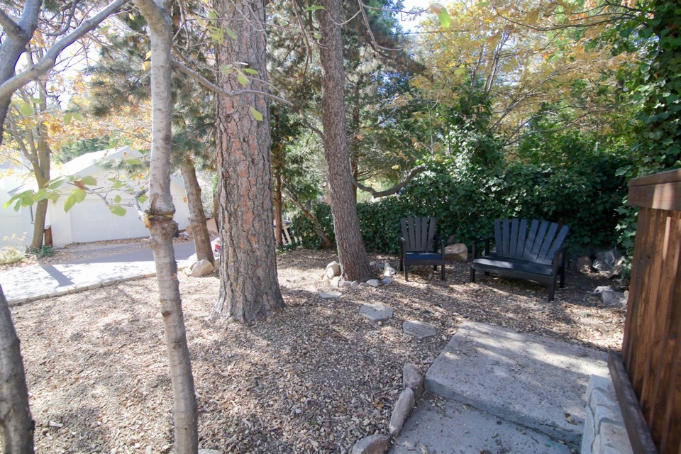 26364 alpine lane twin peaks ca southern california for Nice trees for front yard